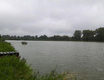Karpiowe Grand Prix Kół 33 i 43 - Halinów - 25.08.2018