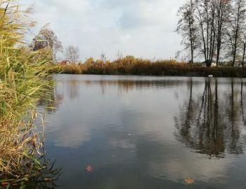 """Towarzyskie zawody spławikowe """"największa ryba"""" - Nieporęt - 27.10.2018"""