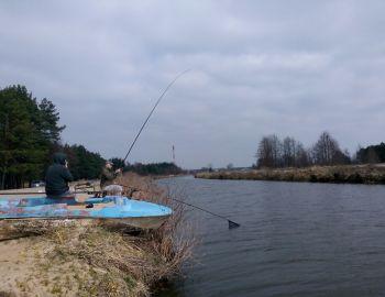 Towarzyskie zawody spławikowe /rozpoczęcie sezonu/ - Stare Załubice - 30.03.2019
