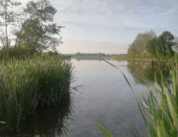 Towarzyskie zawody feederowe - łowisko Przystanek Bielawa - 25.05.2019