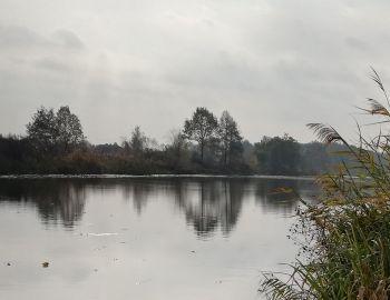 Towarzyskie międzykołowe zawody spławikowo-gruntowe - Nieporęt - 10.11.2018